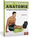 Core Training Anatomie: Der Ratgeber für anatomisch richtiges Core-Training
