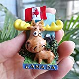 Kanada Magnet Süßes Rentier & Flagge 3D Harz Kühlschrank Magnete Tourismus Souvenir Home Dekoration Kühlschrank magnetischen Aufkleber