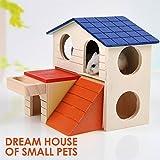 Best Pet Hut - Two Stories Wooden Pet House Cum Villa Review