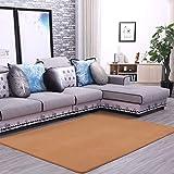 D-TD-Teppich Volltonfarbe Korallen Samt Verdickung Wohnzimmer Couchtisch Teppich - Schlafzimmer Volle Nacht Rechteckiger Fenster Teppich - Einfache Moderne (Farbe : B, größe : 80 * 160cm)