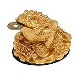 Feng Shui Denaro Fortuna Fortuna Orientale Cinese Ricchezza Rana Rospo Arredamento Moneta