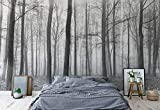 Schwarz Und Weiß Nebligen Wald Vlies Fototapete Fotomural - Wandbild - Tapete - 416cm x 254cm / 4 Teilig - Gedrückt auf 130gsm Vlies - 11223VEXXXL - Wald und Bäume