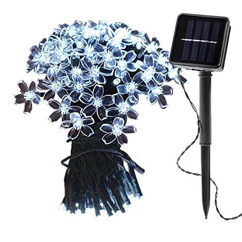 OMGAI Solar Lichterkette Blumen LED Lights Weihnachten Dekoration 12 Meter 100 LED Wasserdicht für Außen (Corda Solare)