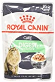 Royal Canine Fel.Digest Sensitive 85gP
