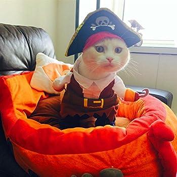 Pirate des Caraïbes Costume de chat drôle pour chien Pet Vêtements pour coiffeuse Corsair jusqu'Parti Apparel Vêtements pour chien chat plus Hat