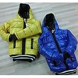 Único fresco chaqueta universal Abajo Diseño para el iPhone Case.