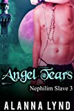 Angel Tears: An M/M Mpreg Angel/Demon Fantasy Romance (Nephilim Slave Book 3) (English Edition)