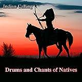 Apache Spirit (Native American Music)