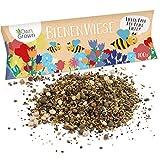Bienenwiese Blumenmischung, 100g Premium Bienen Saatgut für bunte Bienenweide, Bienen und Hummelmagnet von OwnGrown, bienenfreundliche Blumensamen, Bienensaatgut ein- und mehrjährig