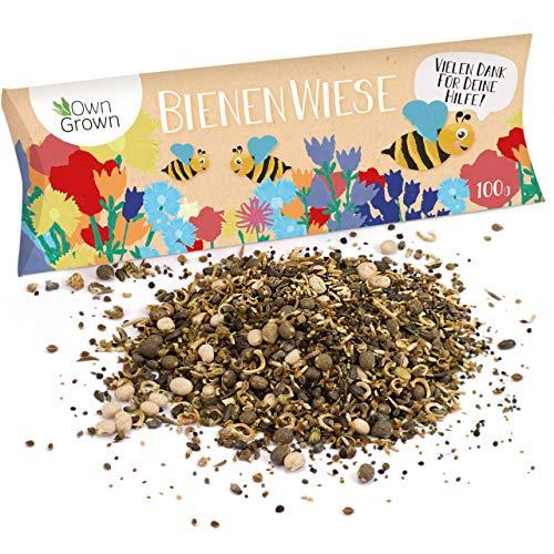 Bienenwiese Blumenmischung, 100g Premium Bienen Saatgut für bunte Bienenweide, Bienen und Hummelmagnet von OwnGrown, bienenfreundliche Blumensamen, Bienensaatgut ein- und mehrjährig -