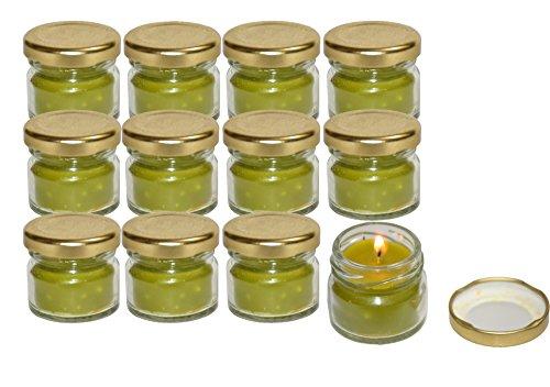 Pure Source India Scented Mini Jar Candle 30 Gram Each Set Of 12 Pcs Tea Tree Fragrance