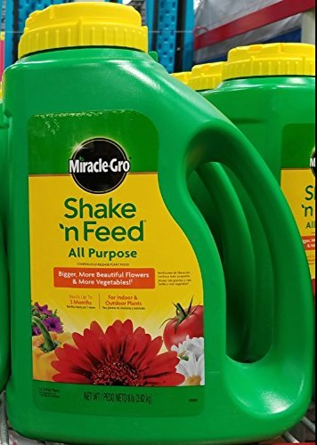 Miracle-Gro Shake 'n Feed 8-Pound Shaker Jug Continuous Release All Purpose Plant Food by Miracle-Gro - All Purpose Shaker