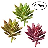 WINOMO Künstliche Sukkulenten klein Kunstpflanzen für Haus Büro Dekor 9 Stücke