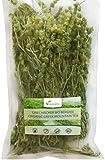 Greek Mountain Tea   200g Premium Quality   VEGAN & ORGANIC by Vegavero