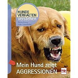 Mein Hund zeigt Aggressionen