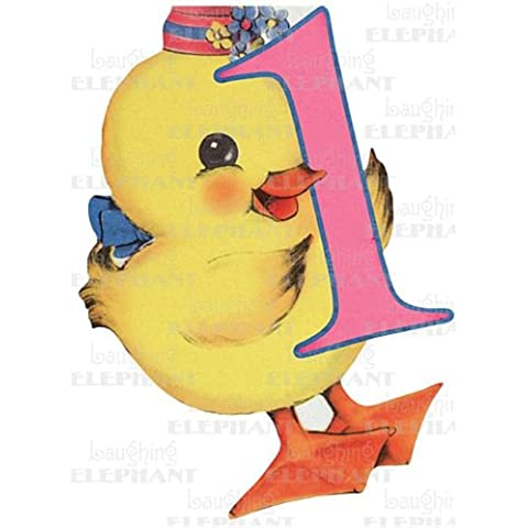Baby Chick - 1st Birthday - Greeting Card (6 Cards Individually Bagged W/ Envelopes & Header)