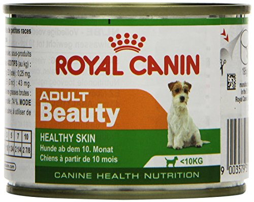 Royal Canin Hundefutter Mini Adult Beauty, 195g, 12er Pack (12 x 195 g)