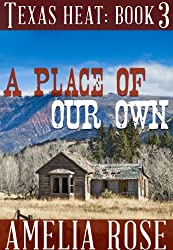 A Place Of Our Own (Contemporary Cowboy Romance) (Texas Heat Book 3)
