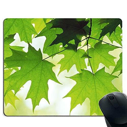 Mauspad / Mauspad   verbesserte Präzision und Geschwindigkeit   Gummiboden für stabilen Halt auf glatten Oberflächen   rutschfest   haltbar   Frische grüne Blätter