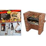 La Holland Plastics Original Brand–construir en & Bake–Barbacoa + Starter Pack OF- Pastillas, utensilios de 3piezas Kit, parrilla cepillo, Astillas de nogal, Tenedor para barbacoa + Limpiador para barbacoas.