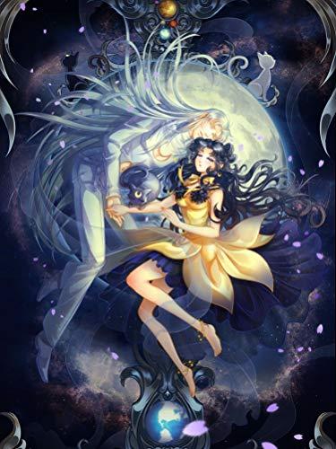 Infinite Arts Sailor Moon Crystal (24x32 inch / 60x80 cm) Silk Print Poster Seide Plakat - Silk Printing - BC51E8