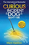 The Curious Incident of the Dog In the Night-time by Mark Haddon (2012-08-02) - David Fickling Books (PB) - 02/08/2012