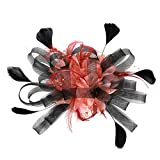 YWLINK 1920er Jahre ZubehöR Stirnband Klassisch Fascinators Hut Blume Mesh BäNder Federn Auf Einem Stirnband Cocktail Tea Tanzparty Party Retro Headwear FüR MäDchen Und Damen