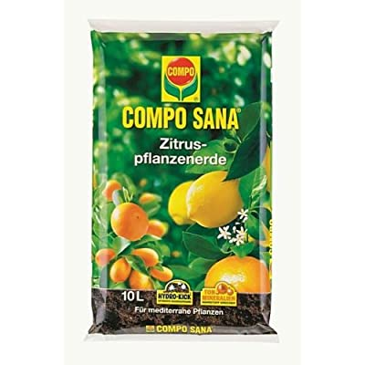 Compo 11671 Sana Zitruspflanzenerde, 10 L von Compo bei Du und dein Garten