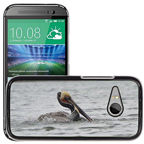 Nur Handy HOT Style Handy PC Hard Case Cover//m00138543Pelican Wasser Wild Nature Sea//HTC One Mini 2/M8Mini/(passt Nicht für M8) (Mini Case Hard Pelican)