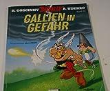 Gallien in Gefahr