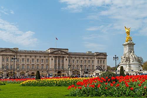 Lovefyl DIY 5D Diamant Malerei Buckingham Palace Panorama Tier Voll Kreis Diamant Stickerei Stickerei Diamant Dekoration 40X50Cm Buckingham Crystal