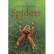 Spiders (Beginners)