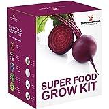 SUPER CIBO SEMI Kit per far crescere SCATOLA REGALO DA Thompson & MORGAN 5 Appositamente SELEZIONATO Insalata to Grow ; lettuga, MOLLA CIPOLLA, carota, barbabietola & Spinaci SEMI