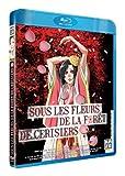 Youth Literature Film 2 : Sous les fleurs de la forêt de cerisiers [Francia] [Blu-ray]