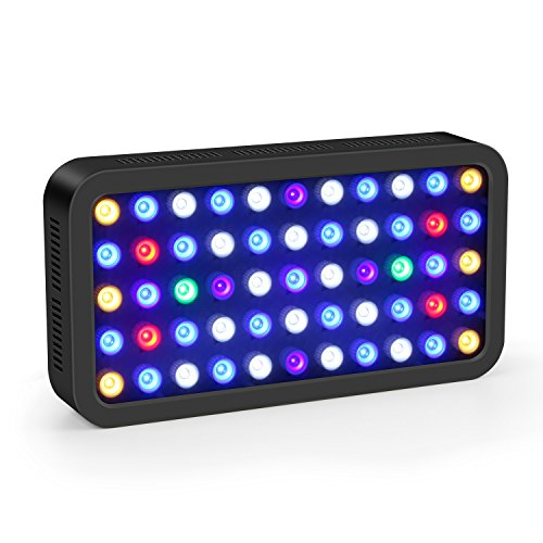 Roleadro Dimmbar 165w LED Aquarium Beleuchtung Meerwasser Led Aquarium Lampe 20L-50L für Korallen Fisch Planzen 40x21x6cm