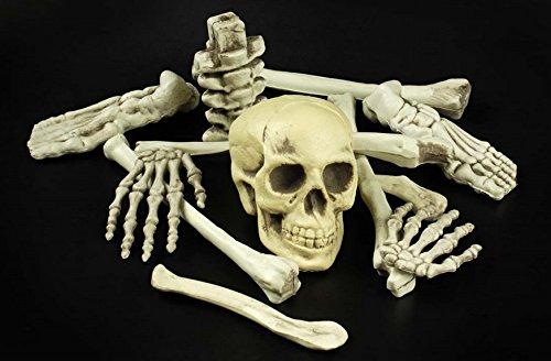 en Skelett 12 Teile für Grusel Haus (Halloween-dekoration Skelett Knochen)
