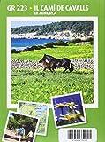 Cami De Cavalls Il: Minorca (Italiano) (Guia & Mapa)