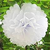 10er Pompoms, BDM Pompons DIY Papierblumen Dekoration für Hochzeit/Geburtstag/ Baby Shower/ Weihnachten Weiß Seidenpapier Blumen