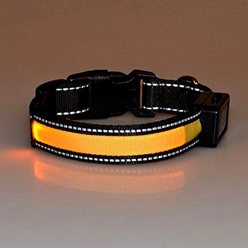 LED Hundehalsband, LaiXin LED Hundehalsband Leuchtend Nylon Aufladbar Solaraufladung USB Wiederaufladbar Wasserdichte Halsbänder Verstellbar, Blinkende Sicherheitsleine für Große Hunde - Gelb - Gelber Labrador Retriever Training
