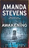 The Awakening (The Graveyard Queen, Book 7)