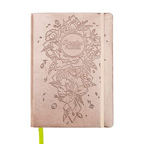 Passion Planner Pro datiert Jan-Dez 2019 - zielorientiert-Agenda, Terminkalender, Reflexion Tageserfassung - (B5) Montag Start (leuchtende Rose Gold)