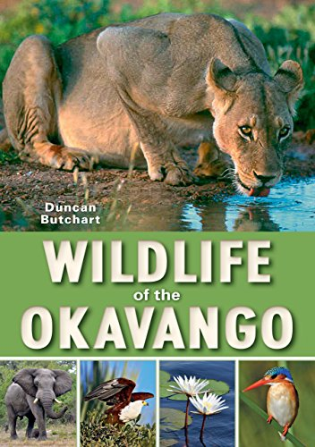 Wildlife of the Okavango (English Edition) - Heron Tiere