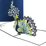 Pop Up Karte 'Pfau - Pfauenfedern' - Geburtstagskarte & Hochzeitskarte - edle Pfauen Glückwunschkarte, 3D Karten zu Hochzeit & Geburtstag - Einladungskarten mit Umschlag