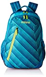 Best The   American - American Tourister Rave 29 Ltrs Teal Casual Backpack Review