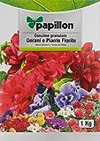Papillon 8025015-Concime per geranios grana, 1 kg