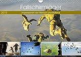 Fallschirmjäger 2019. Impressionen von Mensch und Material (Wandkalender 2019 DIN A4 quer): 12 spannende Einblicke in die Arbeit der Luftlandetruppen (Monatskalender, 14 Seiten ) (CALVENDO Mobilitaet)