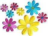 Simplicity Verschiedene Korbblütler zum Aufbügeln