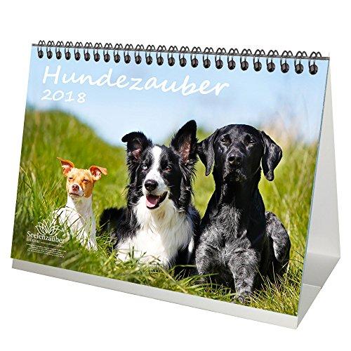 Premium Calendario da tavolo/Calendario 2018· DIN usato  Spedito ovunque in Italia