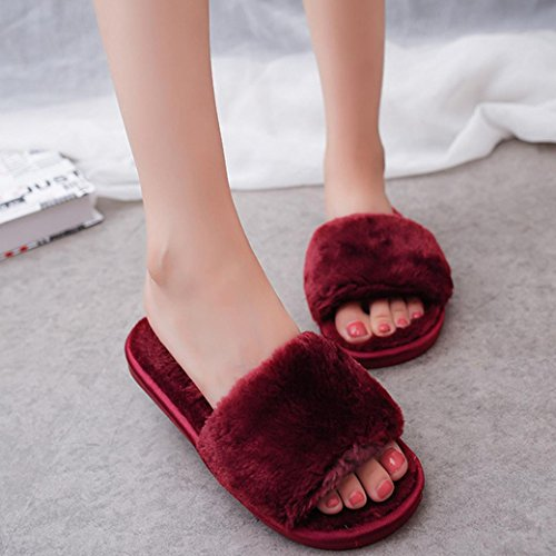 DM&Y 2017 Word interno peluche casa coppia pantofole pantofole di peluche wine red