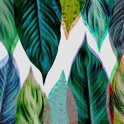 Handyhülle mit Nature-Design: iPhone 7 Hülle / aus recyceltem PET / robuste Schutzhülle / Stylisches & umweltfreundliches iPhone 7 Case - Apple iPhone 7 Hülle: Pineapple von Amy Sia Green Leaves von Mareike Böhmer